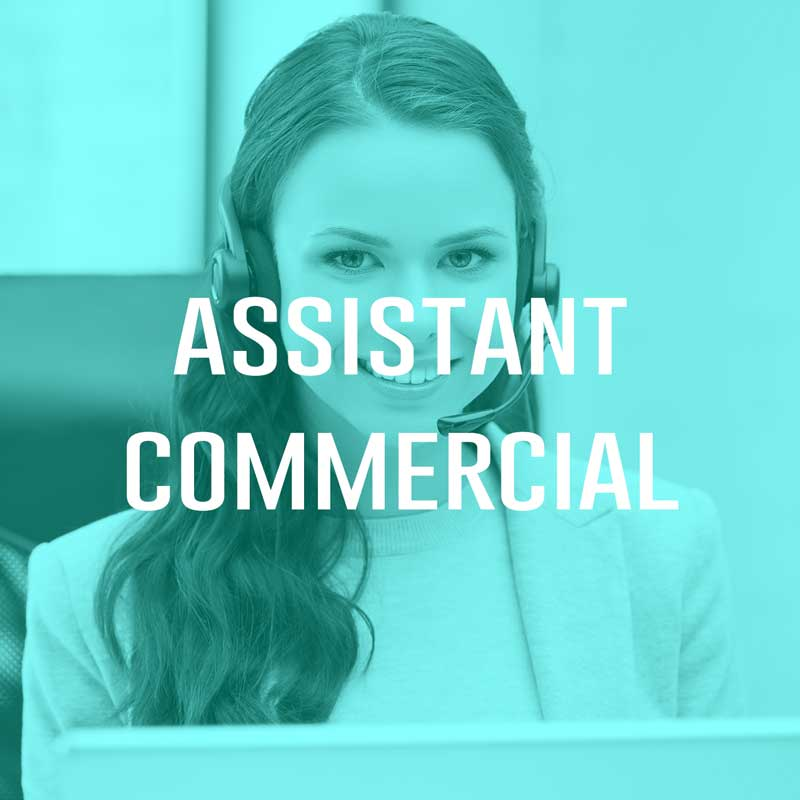 Assistant Commercial (H/F)