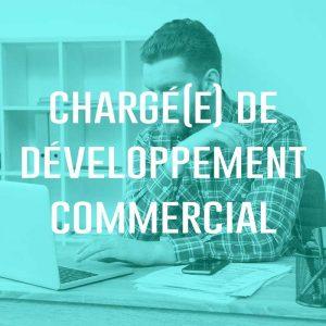 Chargé de développement commercial - Chauwin conseil rh