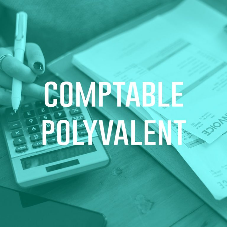 Comptable Polyvalent (H/F)